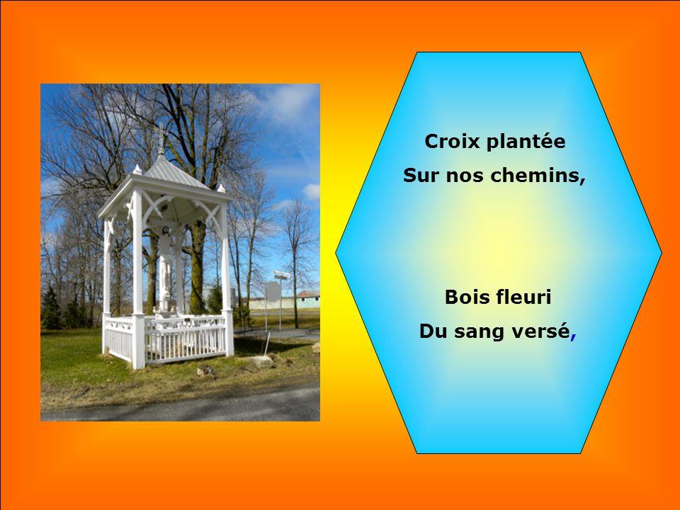 Croix plantée Sur nos chemins, Bois fleuri Du sang versé,
