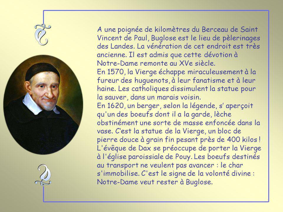 A une poignée de kilomètres du Berceau de Saint Vincent de Paul, Buglose est le lieu de pèlerinages des Landes. La vénération de cet endroit est très ancienne. Il est admis que cette dévotion à Notre-Dame remonte au XVe siècle.