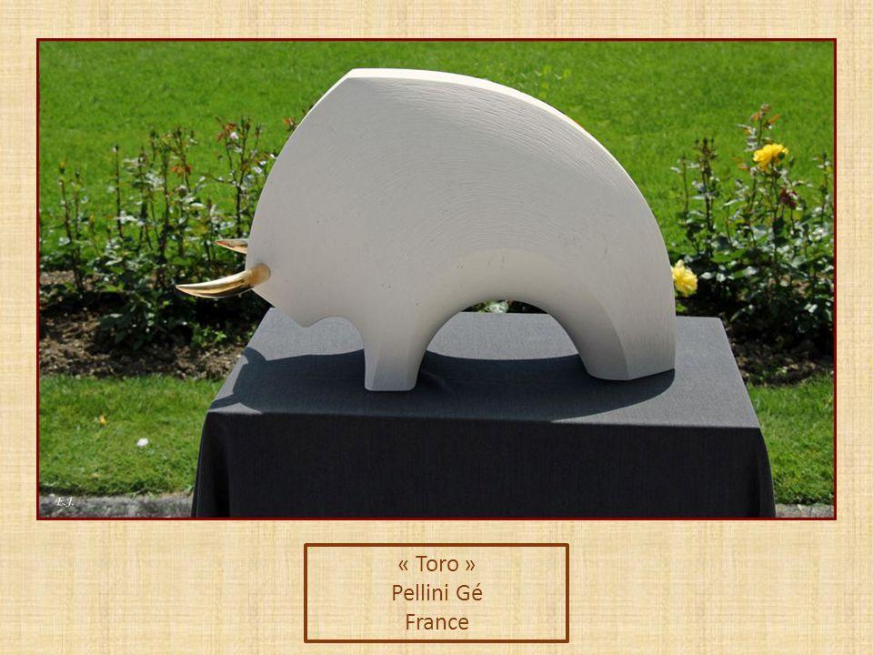 « Toro » Pellini Gé France