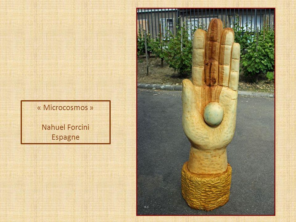 « Microcosmos » Nahuel Forcini Espagne