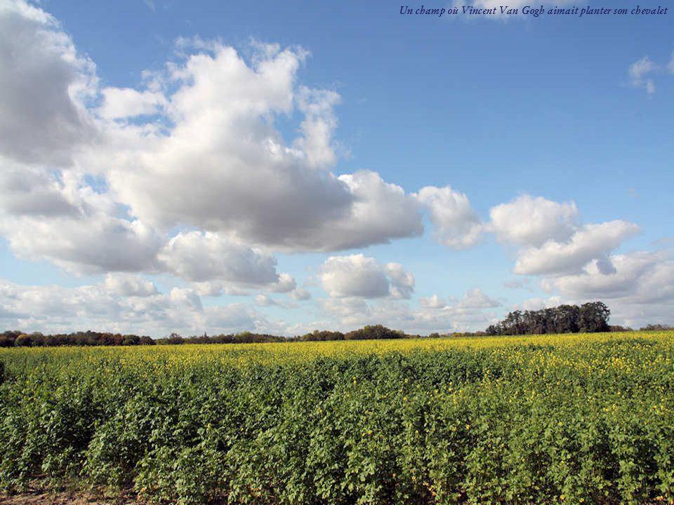 Un champ où Vincent Van Gogh aimait planter son chevalet