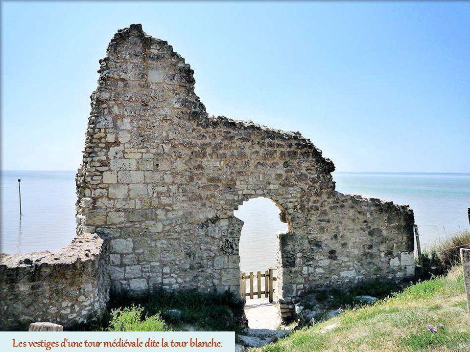 Les vestiges d une tour médiévale dite la tour blanche.