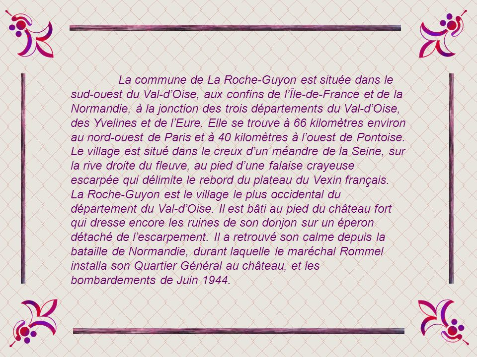 La commune de La Roche-Guyon est située dans le sud-ouest du Val-d'Oise, aux confins de l'Île-de-France et de la Normandie, à la jonction des trois départements du Val-d'Oise, des Yvelines et de l'Eure.