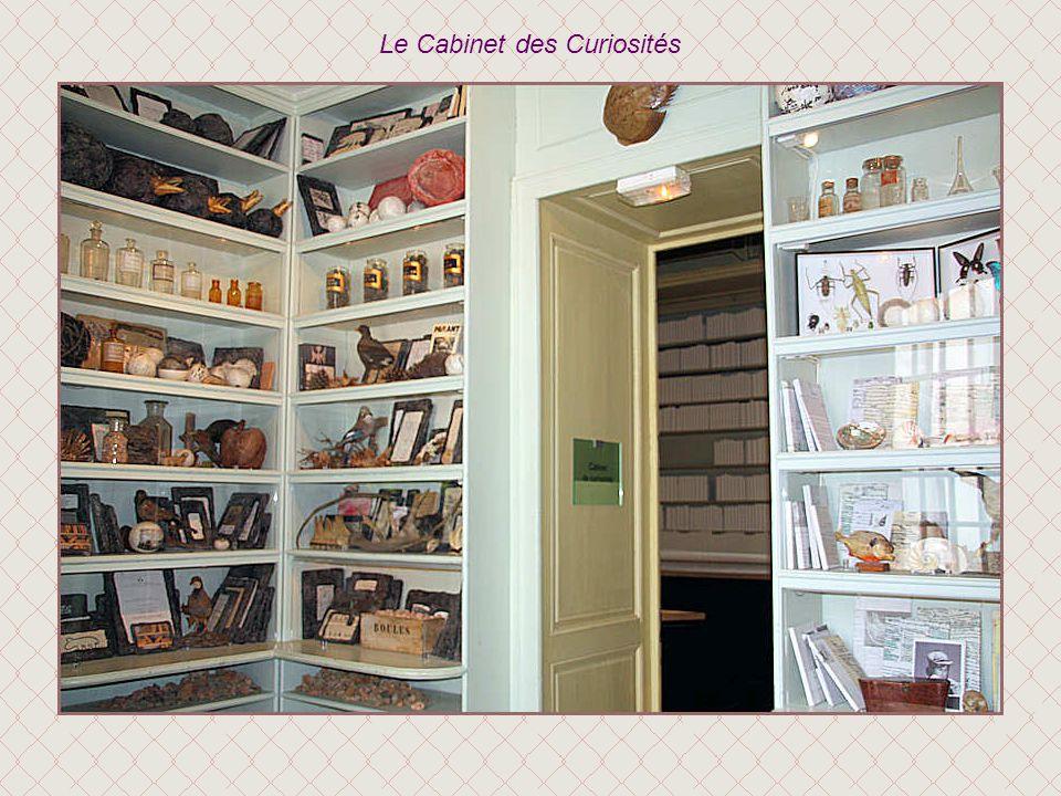Le Cabinet des Curiosités