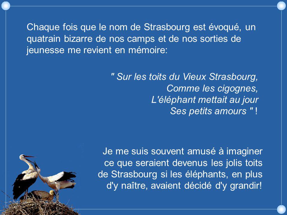 Chaque fois que le nom de Strasbourg est évoqué, un quatrain bizarre de nos camps et de nos sorties de jeunesse me revient en mémoire:
