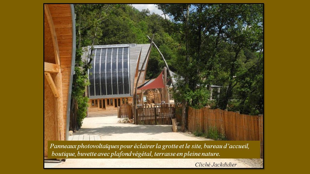 boutique, buvette avec plafond végétal, terrasse en pleine nature.