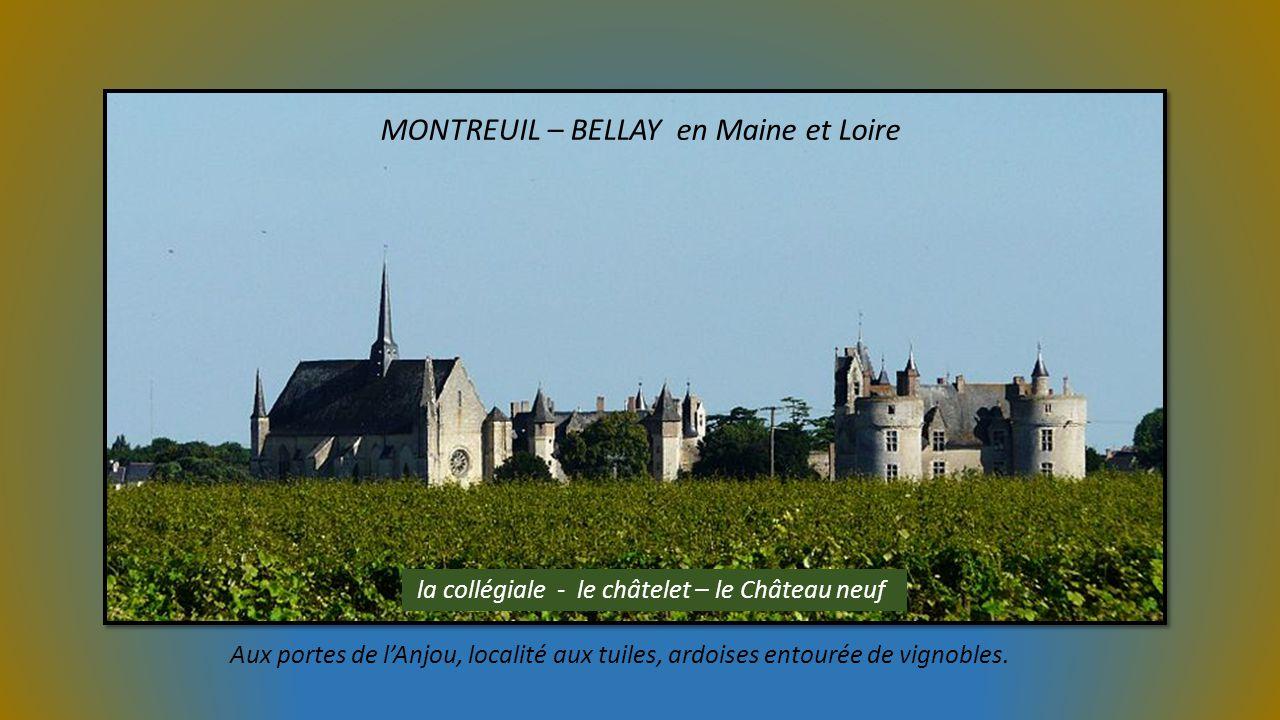 MONTREUIL – BELLAY en Maine et Loire