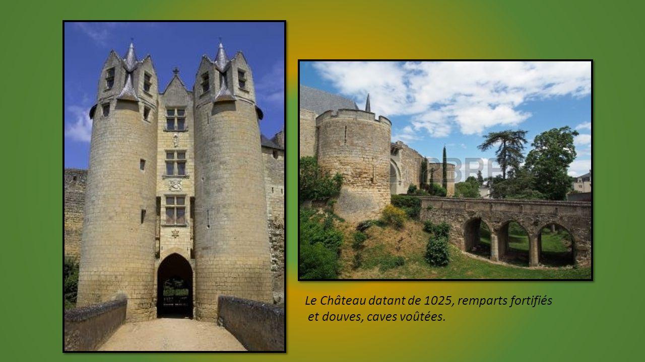 Le Château datant de 1025, remparts fortifiés