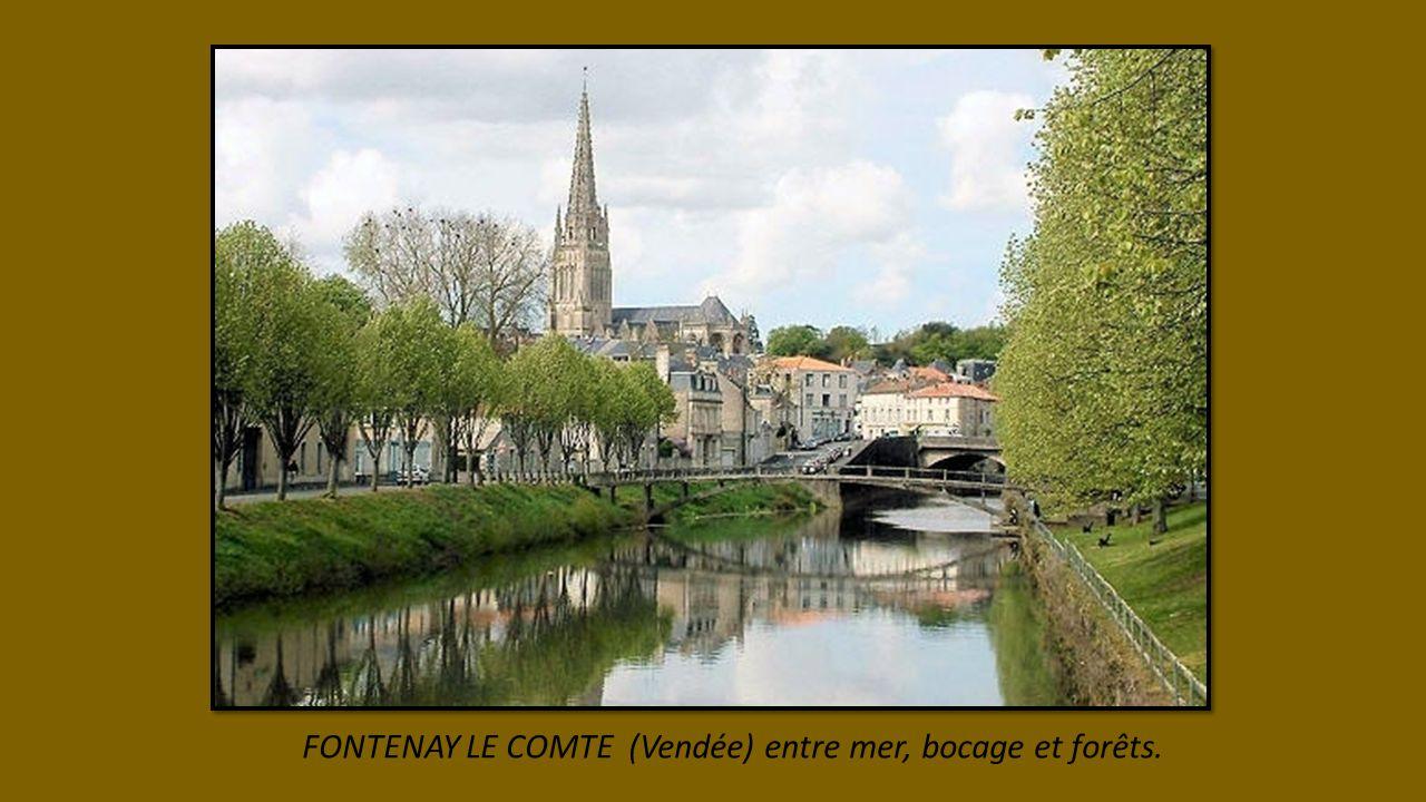 FONTENAY LE COMTE (Vendée) entre mer, bocage et forêts.