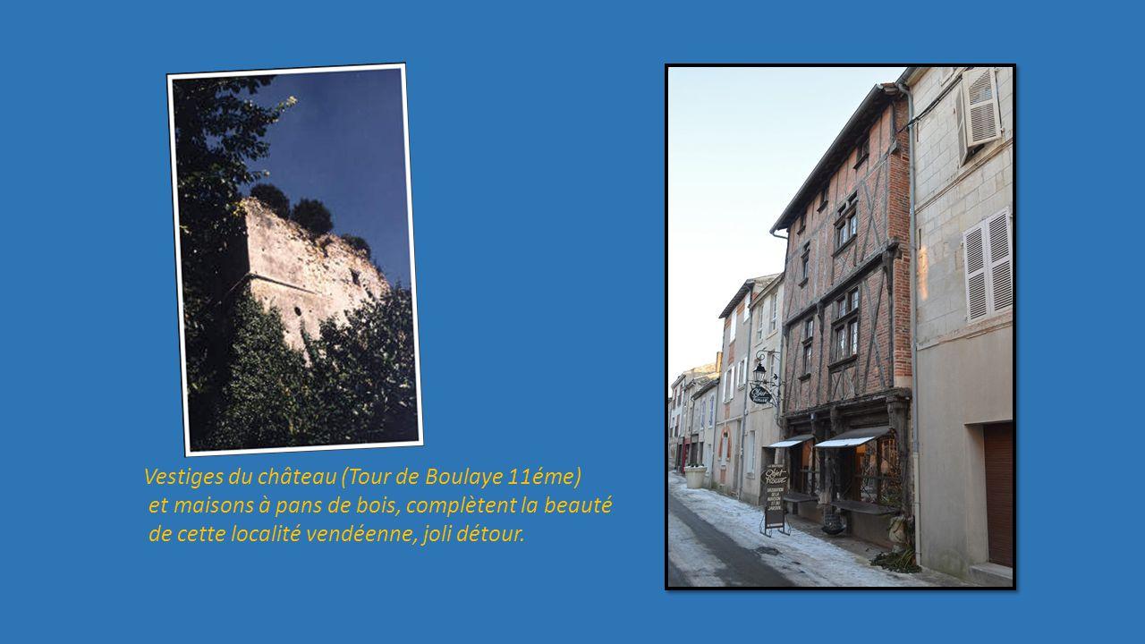 Vestiges du château (Tour de Boulaye 11éme)