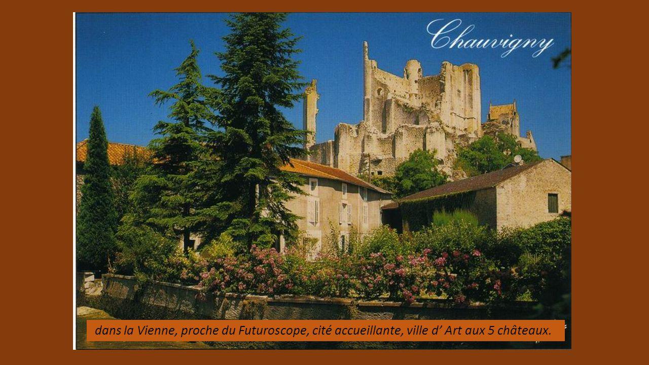 dans la Vienne, proche du Futuroscope, cité accueillante, ville d' Art aux 5 châteaux.