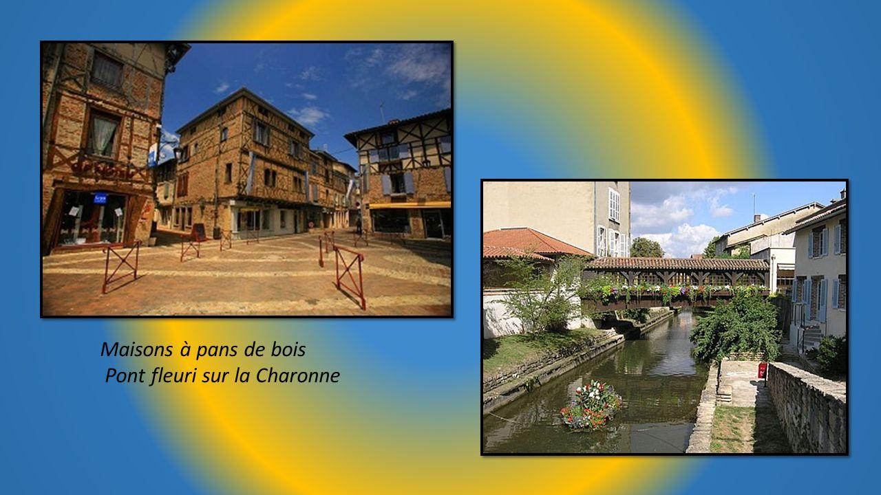 Maisons à pans de bois Pont fleuri sur la Charonne