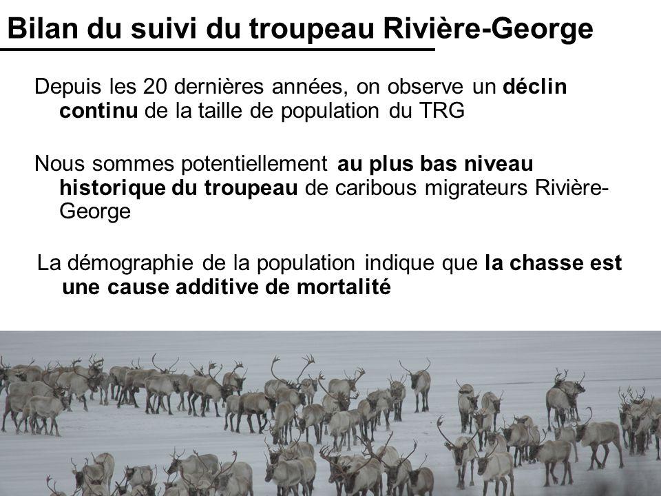 Bilan du suivi du troupeau Rivière-George