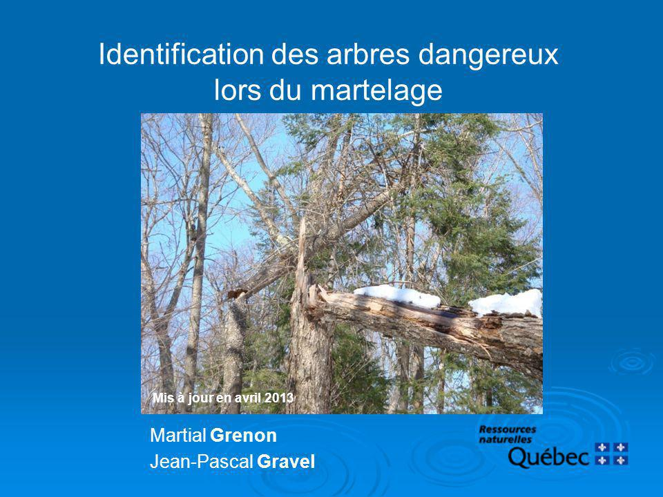 Identification des arbres dangereux lors du martelage