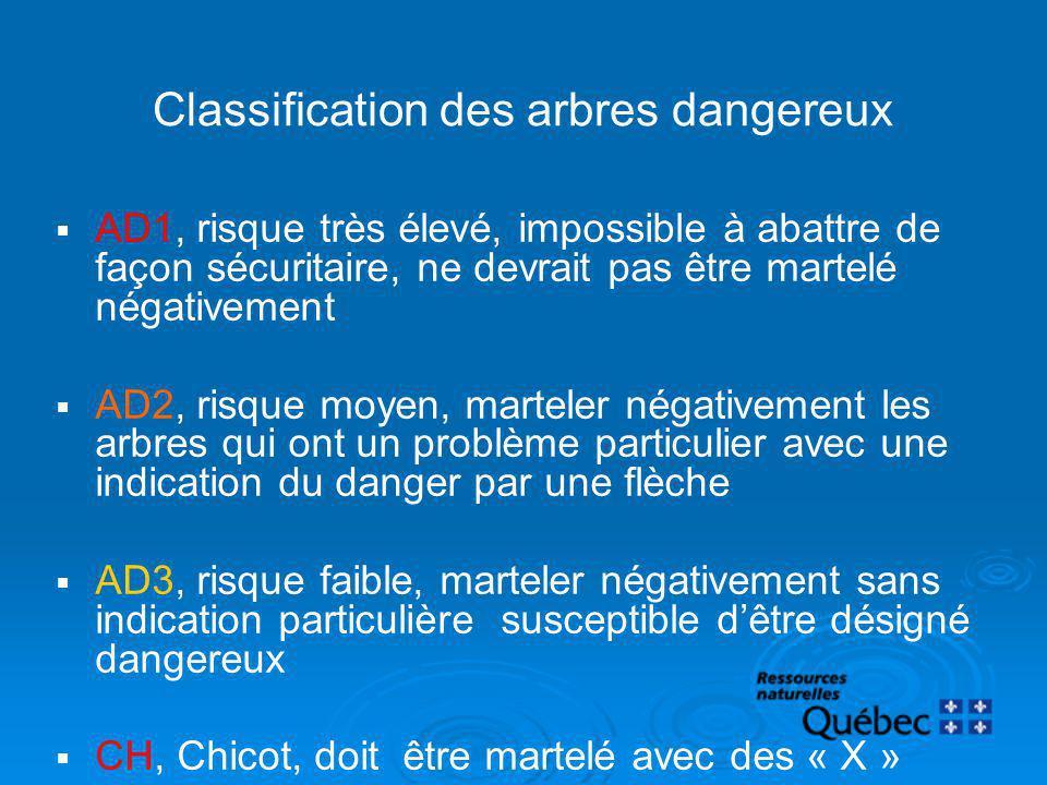 Classification des arbres dangereux
