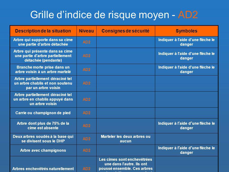 Grille d'indice de risque moyen - AD2