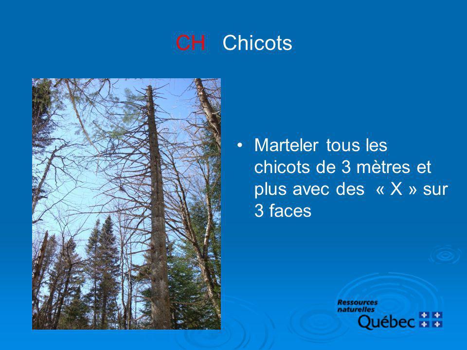 CH Chicots Marteler tous les chicots de 3 mètres et plus avec des « X » sur 3 faces