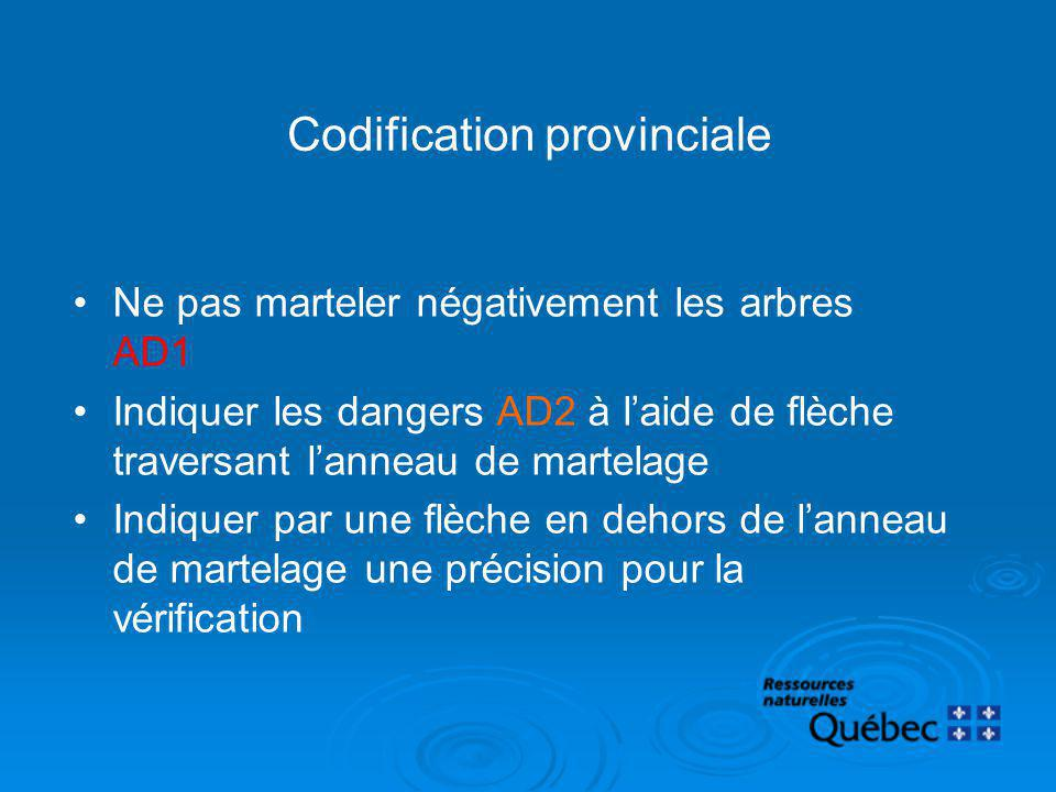 Codification provinciale