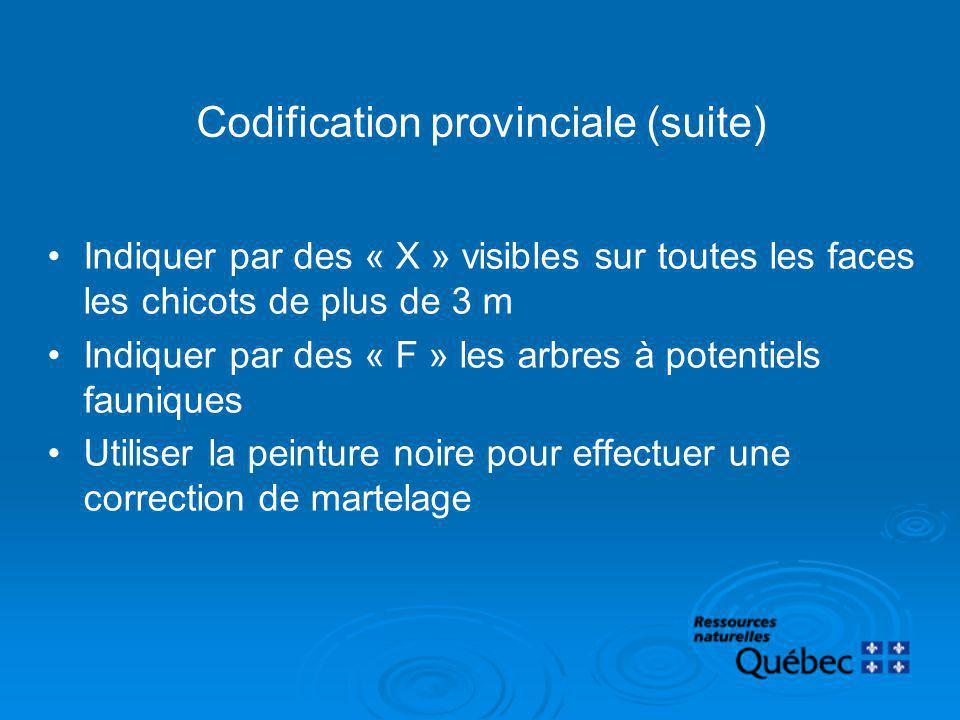 Codification provinciale (suite)
