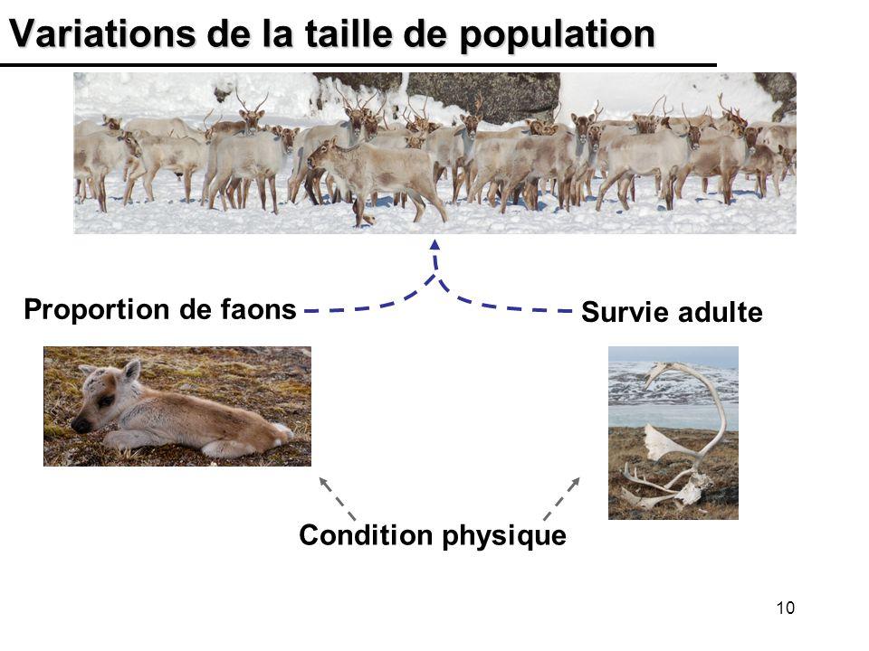 Variations de la taille de population