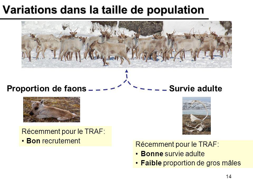 Variations dans la taille de population