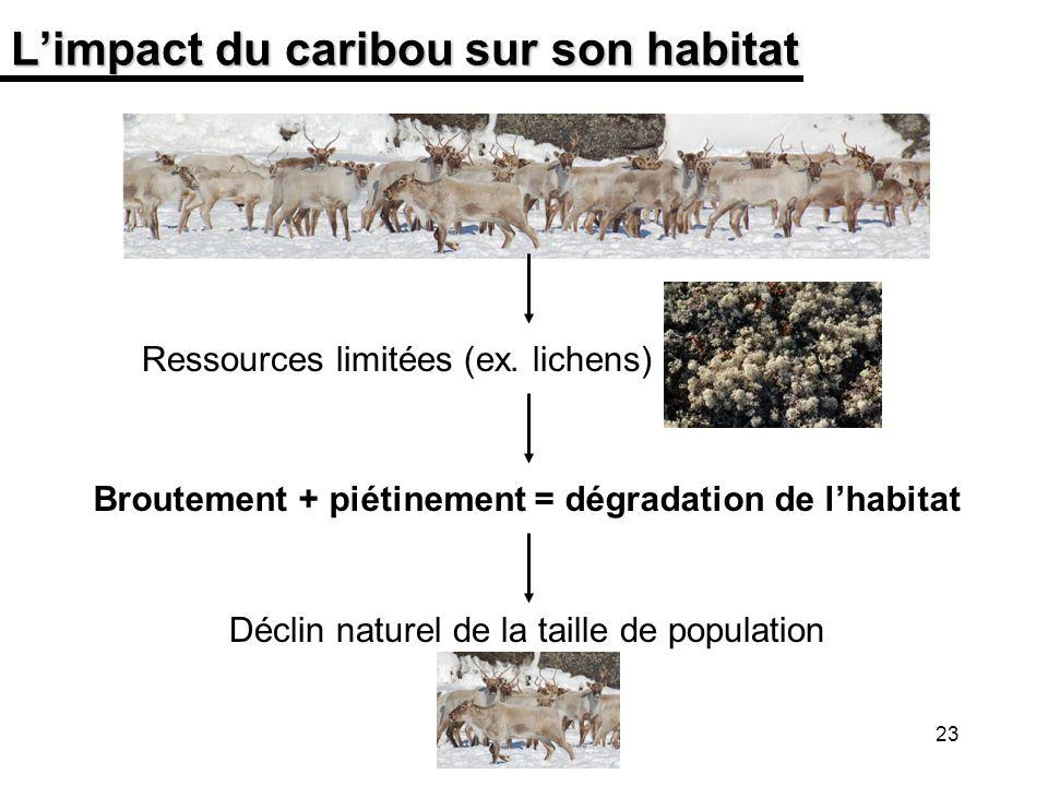 L'impact du caribou sur son habitat