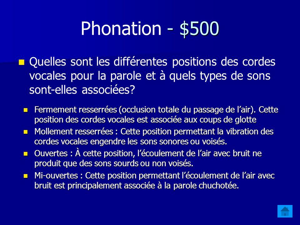 Phonation - $500 Quelles sont les différentes positions des cordes vocales pour la parole et à quels types de sons sont-elles associées