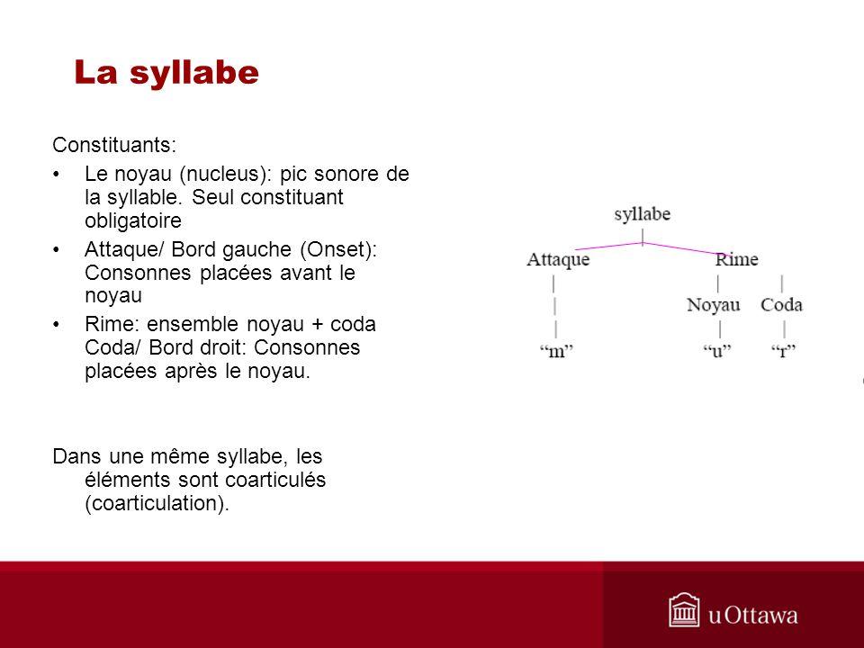 La syllabe Constituants:
