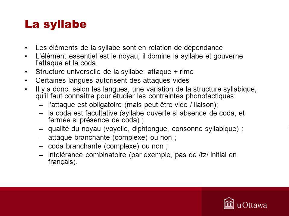 La syllabe Les éléments de la syllabe sont en relation de dépendance