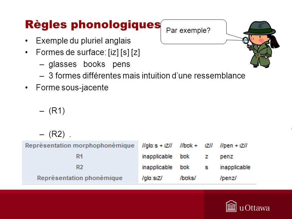 Règles phonologiques Exemple du pluriel anglais