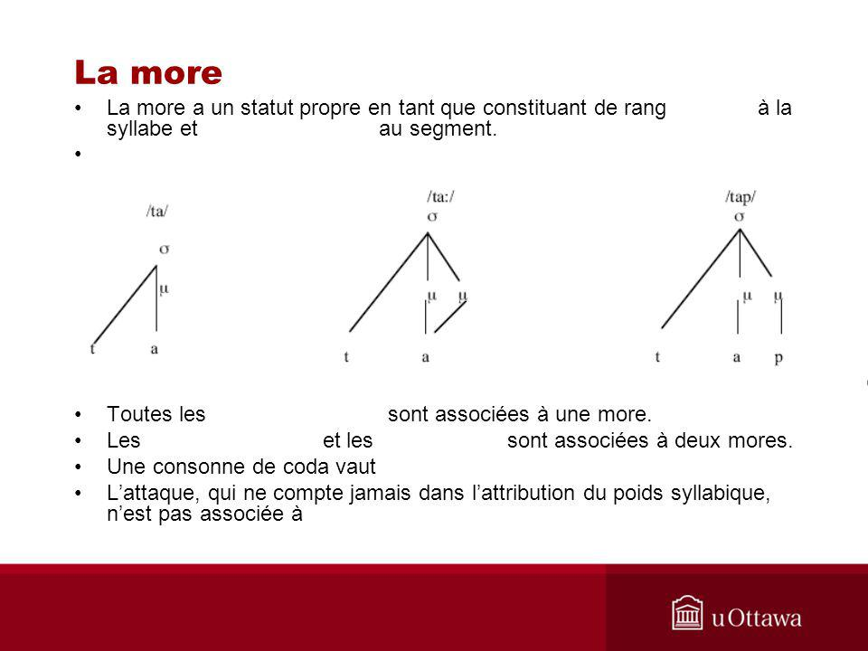 La more La more a un statut propre en tant que constituant de rang à la syllabe et au segment.