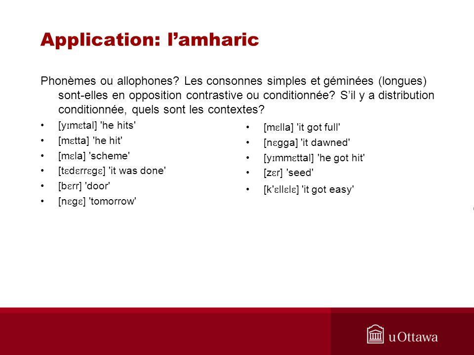 Application: l'amharic
