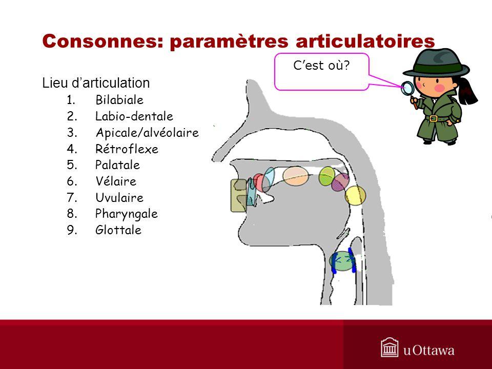 Consonnes: paramètres articulatoires