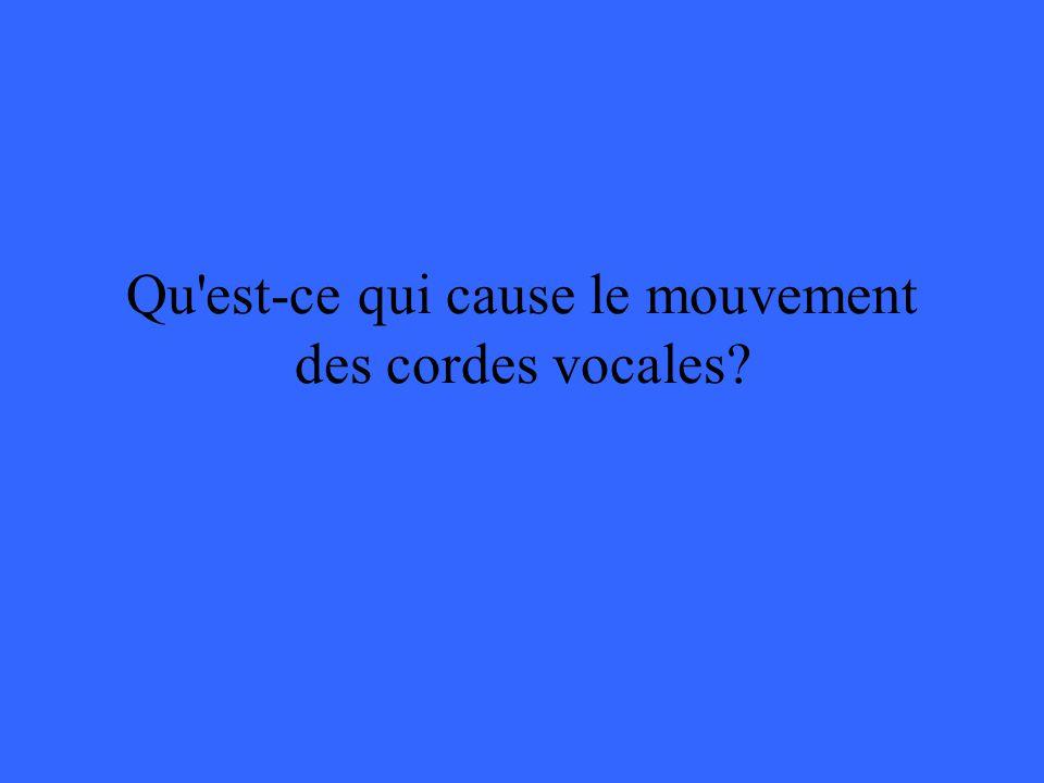 Qu est-ce qui cause le mouvement des cordes vocales
