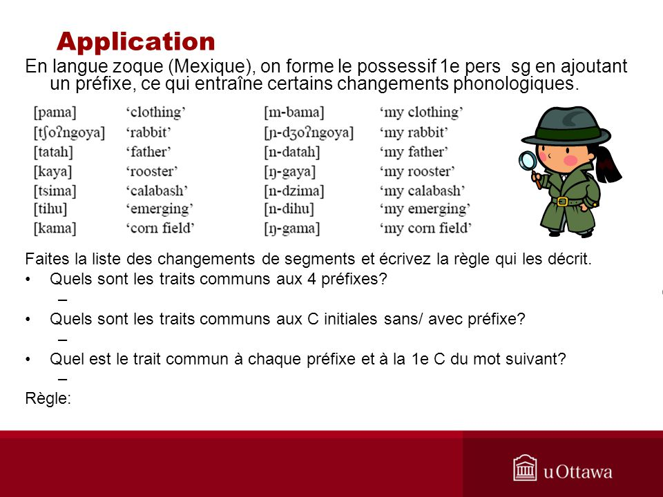 Application En langue zoque (Mexique), on forme le possessif 1e pers sg en ajoutant un préfixe, ce qui entraîne certains changements phonologiques.