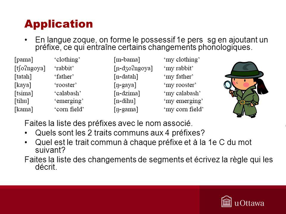 Application En langue zoque, on forme le possessif 1e pers sg en ajoutant un préfixe, ce qui entraîne certains changements phonologiques.