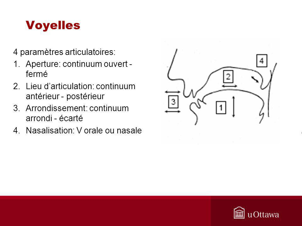 Voyelles 4 paramètres articulatoires: