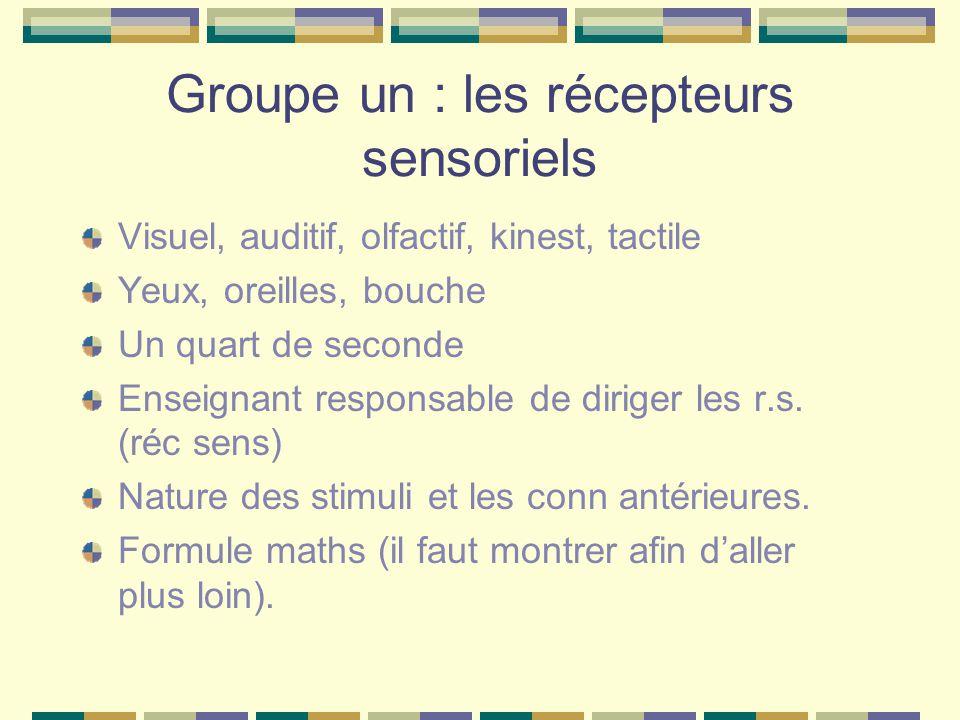 Groupe un : les récepteurs sensoriels