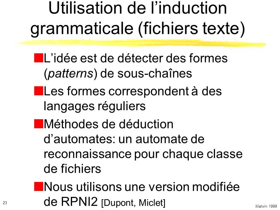 Utilisation de l'induction grammaticale (fichiers texte)