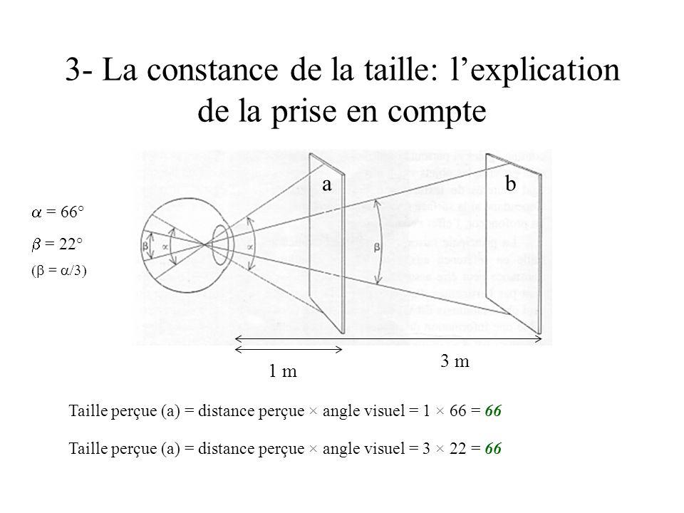 3- La constance de la taille: l'explication de la prise en compte