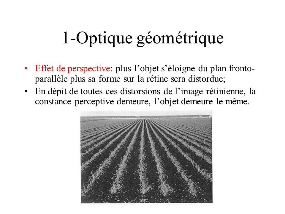 1-Optique géométrique Effet de perspective: plus l'objet s'éloigne du plan fronto-parallèle plus sa forme sur la rétine sera distordue;
