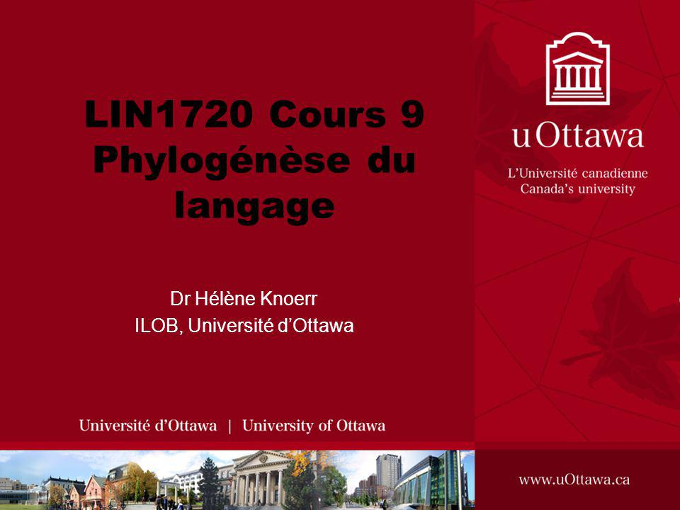LIN1720 Cours 9 Phylogénèse du langage