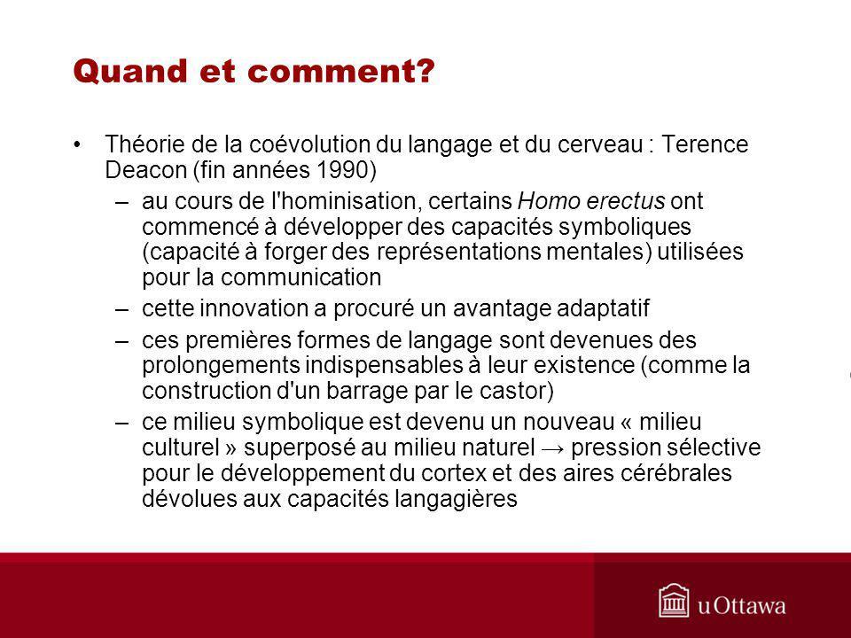 Quand et comment Théorie de la coévolution du langage et du cerveau : Terence Deacon (fin années 1990)