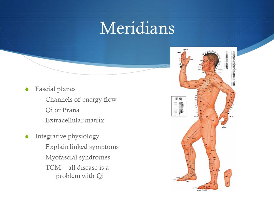 Meridians Fascial planes Channels of energy flow Qi or Prana