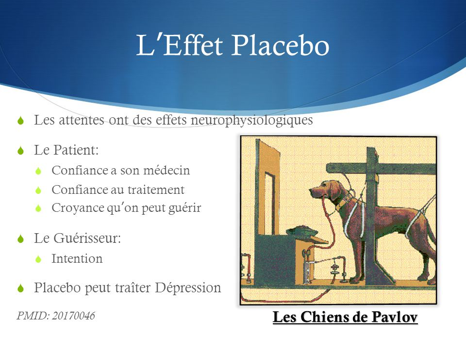 L'Effet Placebo Les Chiens de Pavlov