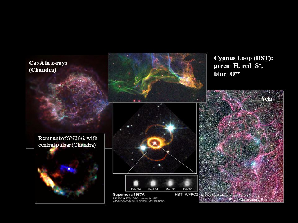 Supernova remnants Cygnus Loop (HST): green=H, red=S+, blue=O++