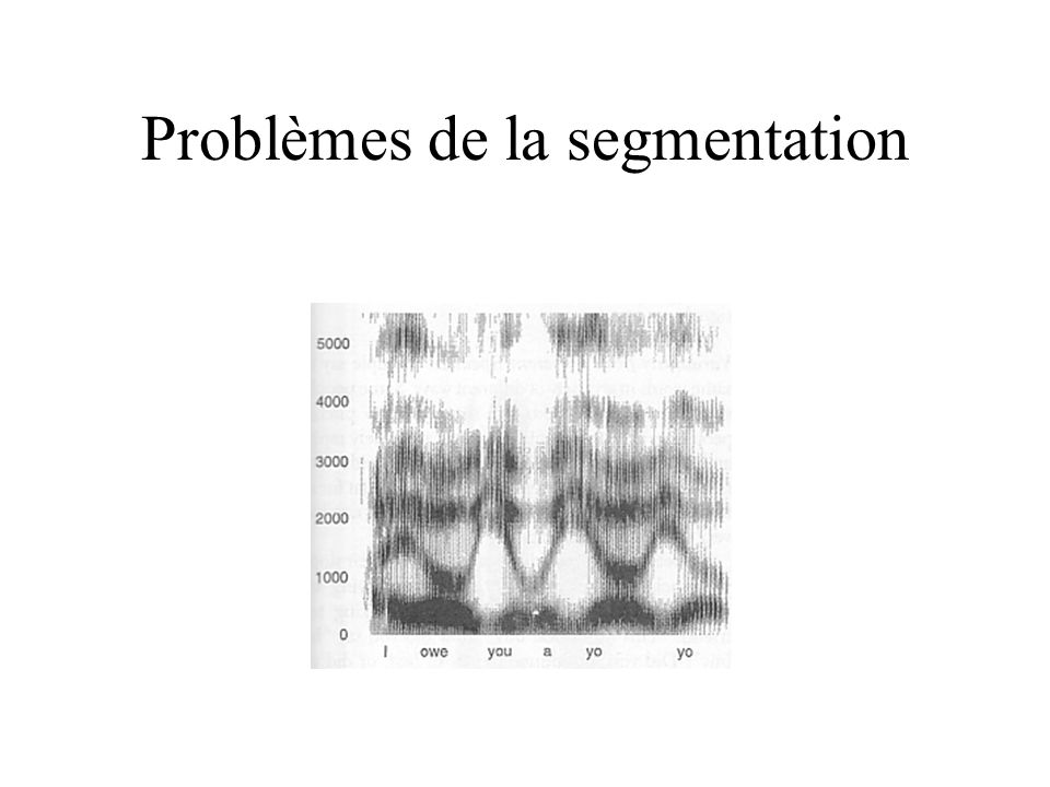 Problèmes de la segmentation