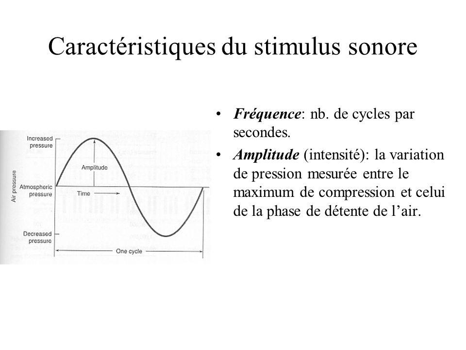 Caractéristiques du stimulus sonore