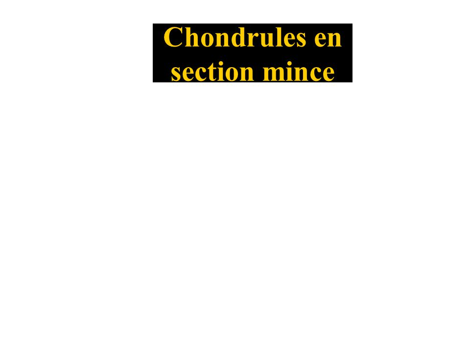 Chondrules en section mince