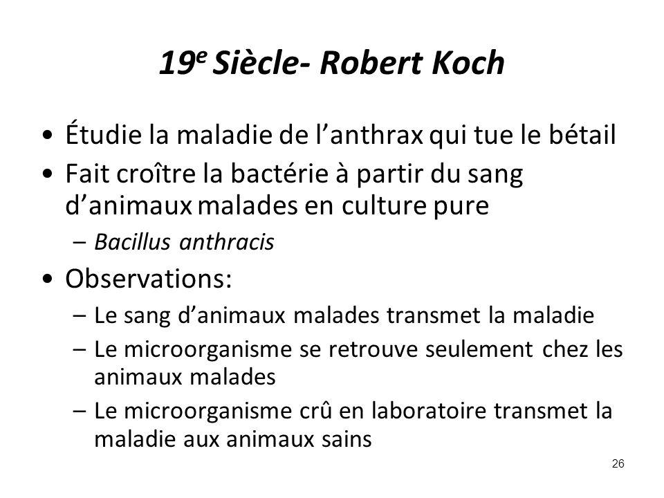 19e Siècle- Robert Koch Étudie la maladie de l'anthrax qui tue le bétail.